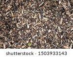 wood chip kids play area floor...   Shutterstock . vector #1503933143