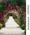 Stock photo in the garden 1503962
