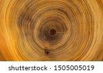 Old Wooden Oak Tree Cut Surfac...