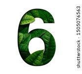 Small photo of Leafs number 6 made of Real alive leafs with Precious paper cut shape of number. Leafs font.