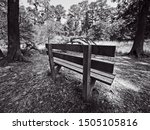 The Woodlands TX USA - 03-26-2019  -  Bench in the Woods in B&W