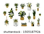 set of home potted plants... | Shutterstock .eps vector #1505187926