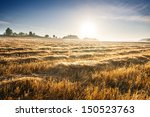 Stubble Field At Sunrise