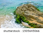 Rock On The Beach With Algae At ...