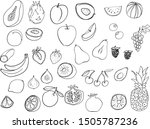 fruit  graphic set  line... | Shutterstock .eps vector #1505787236