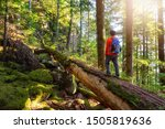 Adventurous Man Hiking On A...