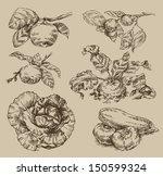garden. vintage pattern | Shutterstock .eps vector #150599324