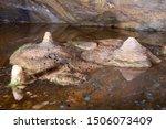 Stalagmites In A Rock Pool In...