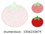 mesh tomato model with triangle ... | Shutterstock .eps vector #1506233879