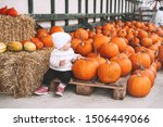 Child Picking Pumpkins At...