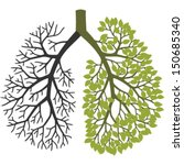 Tree Branches Like The Lungs....