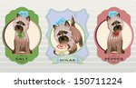 Vector labels with cairn terrier for salt and pepper