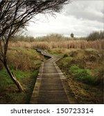 Boardwalk In New Zealand...