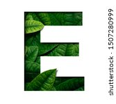 Small photo of Leafs font E made of Real alive leafs with Precious paper cut shape of font. Leafs font.