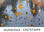 Autumn Leaves Fall Sidewalk Lit ...