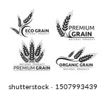 Premium Grain Flat Vector...