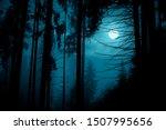 Full Moon Through The Spruce...
