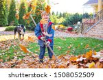 Autumn Leaf Cleaning. Child...