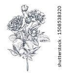hand drawn rose flowers branch... | Shutterstock .eps vector #1508538320