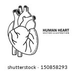 Human Heart Design Over White...