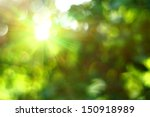 abstract green bokeh background | Shutterstock . vector #150918989