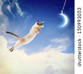 Stock photo image of cat in jump catching moon 150993053