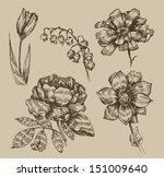 vintage flowers | Shutterstock .eps vector #151009640