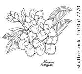 plumerie or frangipany exotic...   Shutterstock .eps vector #1510517270