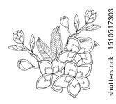 plumerie or frangipany exotic...   Shutterstock .eps vector #1510517303
