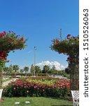 maltepe park  red rose garden | Shutterstock . vector #1510526063