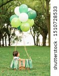 "Small photo of Cute baby sitting in a wowen basket with balloons and a green ribbon banner that reads ""One"". Whimsical hot air balloon flight in a beautiful forest clearing. First birthday photoshoot for a toddler."
