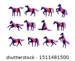 Stock vector set of vector horses isolated on white background collection of purebred thoroughbred horses in 1511481500