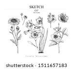 sketch floral botany set.... | Shutterstock .eps vector #1511657183