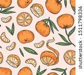 vector tropical fruit set of... | Shutterstock .eps vector #1511798336