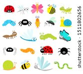 Insect Icon Set. Lady Bug...