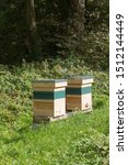 Small photo of Row of Beehives for the Native Black Honeybee (Apies melifera) in the Village of Godolphin in Rural Cornwall, England, UK