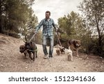 Stock photo professional dog walker or pet sitter walking a pack of cute different breed and rescue dogs on 1512341636