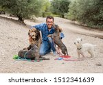 Stock photo professional dog walker or pet sitter with a pack of cute different breed and rescue dogs enjoying 1512341639
