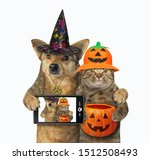 the dog with a smart phone and... | Shutterstock . vector #1512508493