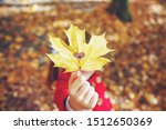 child in a red coat with autumn ... | Shutterstock . vector #1512650369