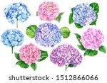 Set Of Hydrangea Flowers On An...