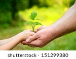 father's and son's hands... | Shutterstock . vector #151299380