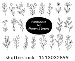 collection forest fern... | Shutterstock .eps vector #1513032899