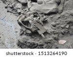 Skeleton Bones La Brea Tar Pit...