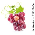 red grape with water drops ... | Shutterstock . vector #151327664
