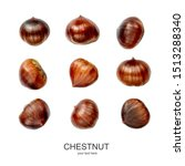 Chestnut pattern. creative...