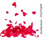 Stock photo rose petals isolated on white background 151376609