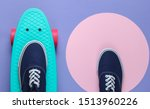 cruiser board and sneakers on... | Shutterstock . vector #1513960226