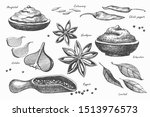 hand drawn set of spices for... | Shutterstock .eps vector #1513976573