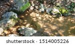 River Stones In Shallow Water.